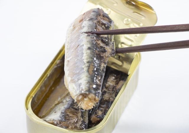 サタプラ 47都道府県 缶詰 お取り寄せ